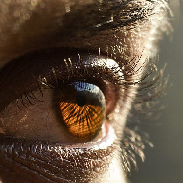 Closeup of man eye-India